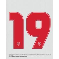 FIFA 19 Olympique Lyonnais edition PS4