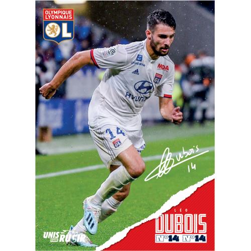 Carte postale Dubois 19/20 - Taille - Unique